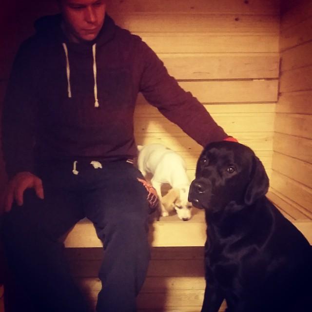 Tuukka istui saunassa Geren ja Pimun kanssa, kun koirilla oli kennel-yskä. Höyry helpotti.