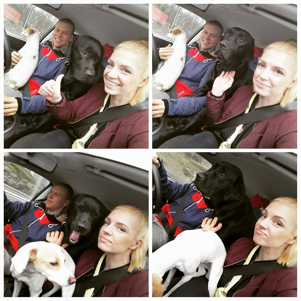 Reilu vuosi sitten Tuukan ja koirien kanssa ajamassa ensimmäistä kertaa meidän Töölön kotiin. Viimeinen remonttikuorma oli juuri heitetty.