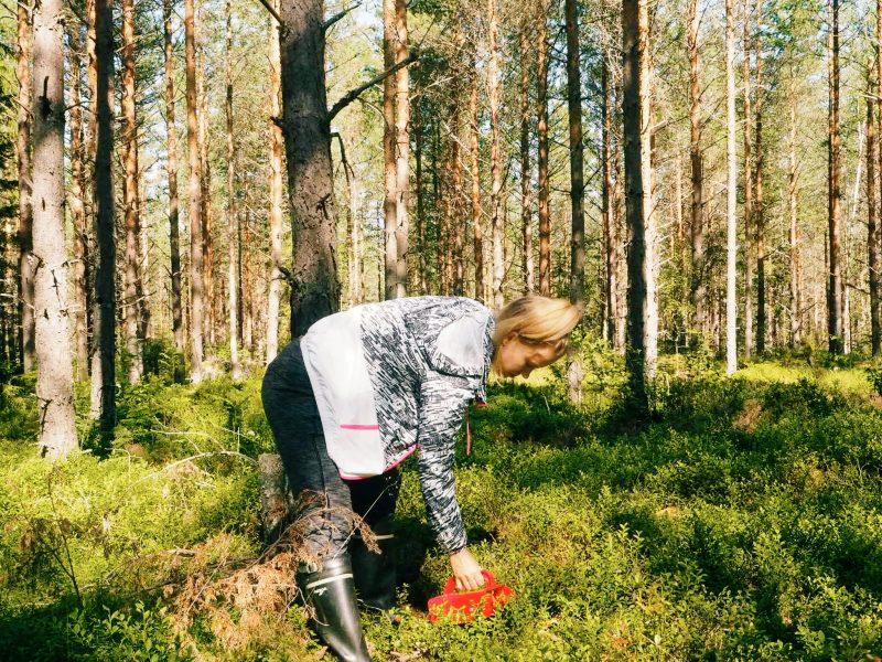 Kyllä Suomen luonto on kaunis ja antelias