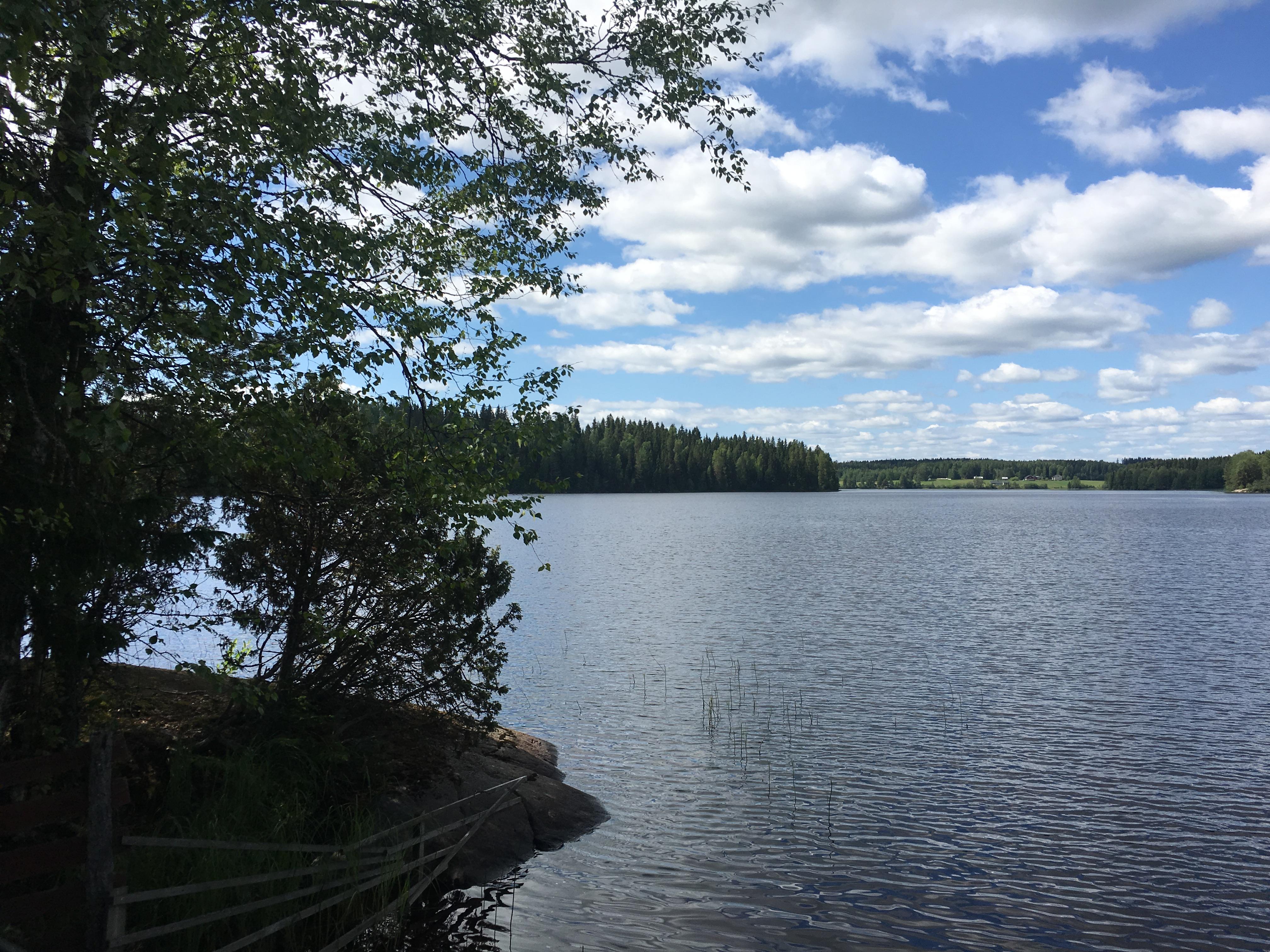 Jarvimaisema-Juhannus-kesa