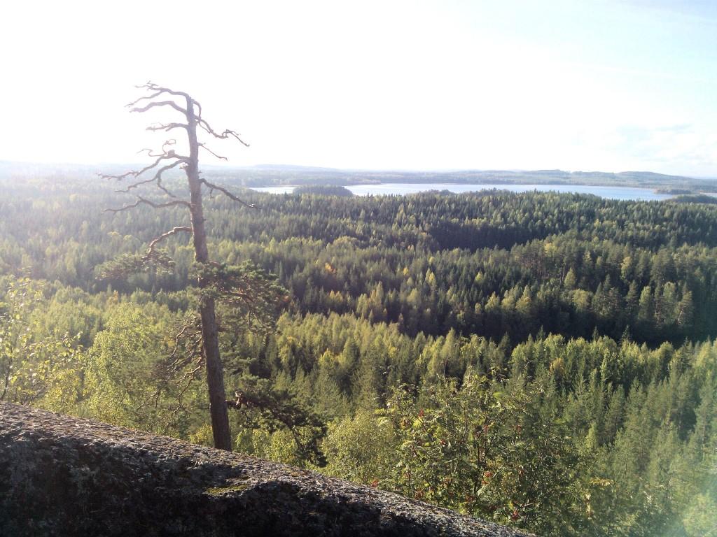Keski-Suomen kaunein paikka?