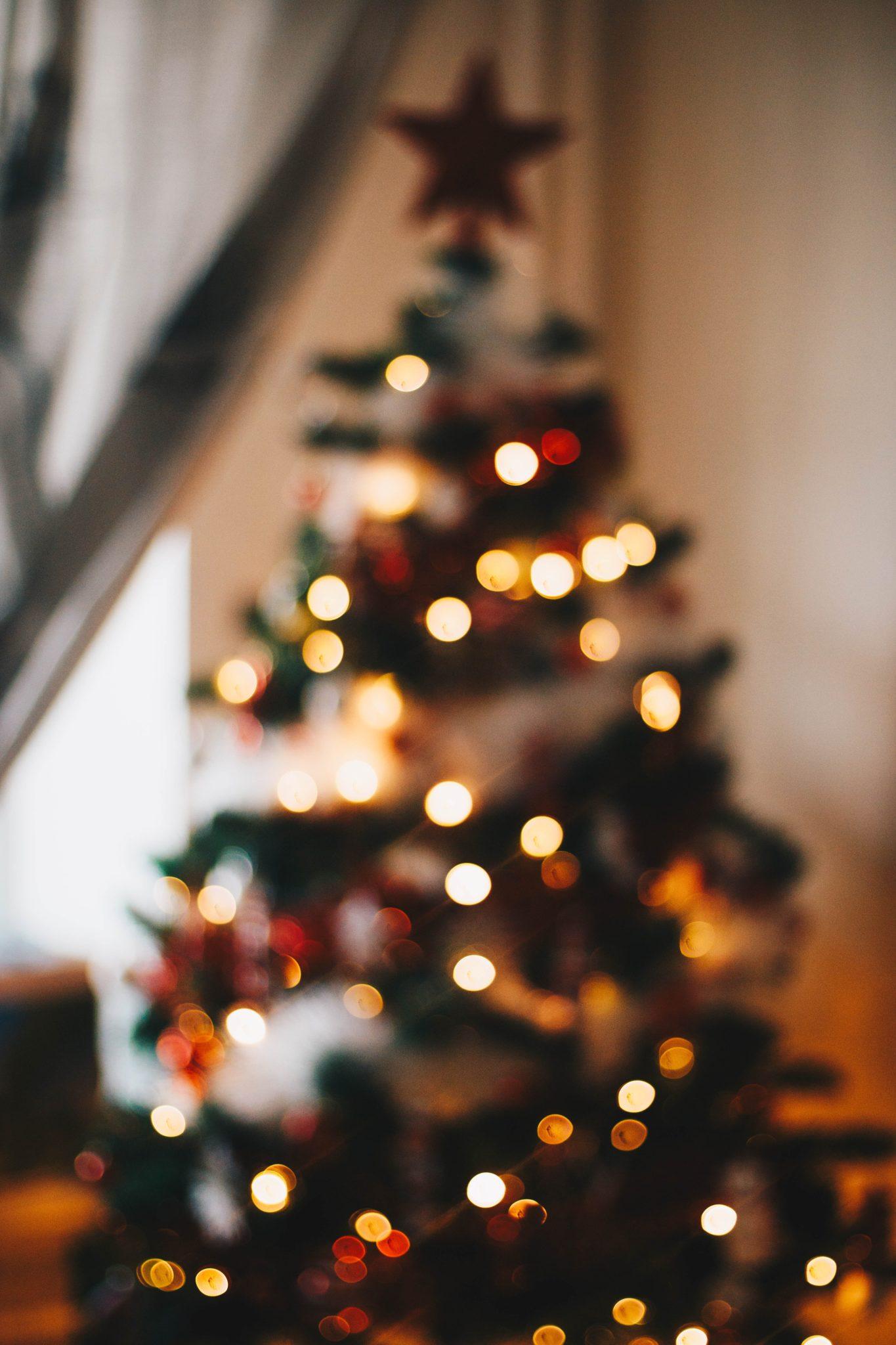 Rauhallista joulua - Joulukalenteri luukku 24