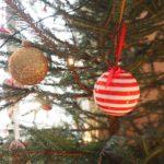 Vuoden 2016 joulukuvia osa 2
