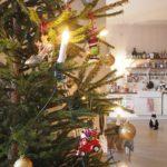 Joulukuusi talossa