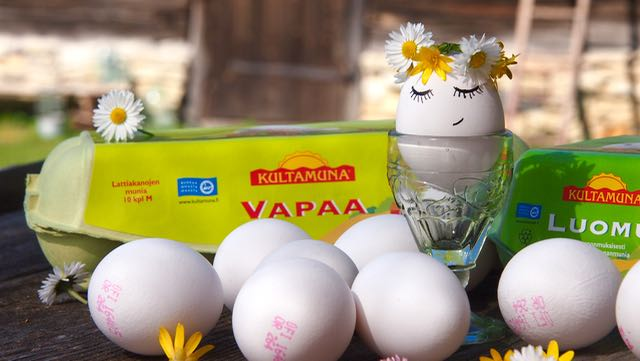 Kultamunan onnelinen kananmuna ja sen kaverit laatikoissaan. Vapaa-kananmunat ja Luomut