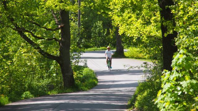 Kevään herkimmästä vihreydestä voi nauttia vain pienen hetken.