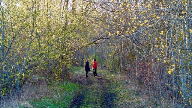 Kevään orastavassa vihreydessä kävelyllä Carolinan kanssa