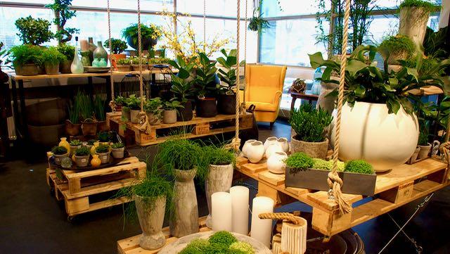 Garden Living Espoon Mankkaalla on Keski-Eurooppalaisen tyylin mukainen puutarha myymällä eli viherstudio. Täältä saa kaiken - kasvit ja suunnittelun.