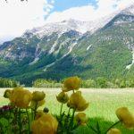 Miltä vuoret tuntuvat? Voiko niitä omistaa?