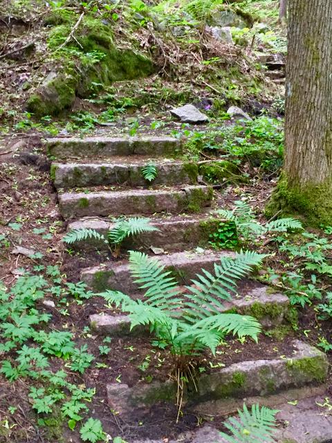 Ihmeelliset portaat eivtä johda mihinkään. Ne ovat varmaan Aurora Karamzinin aikaiset ja tarkoitettu helpottamaan kulkua pitkissä hameissa