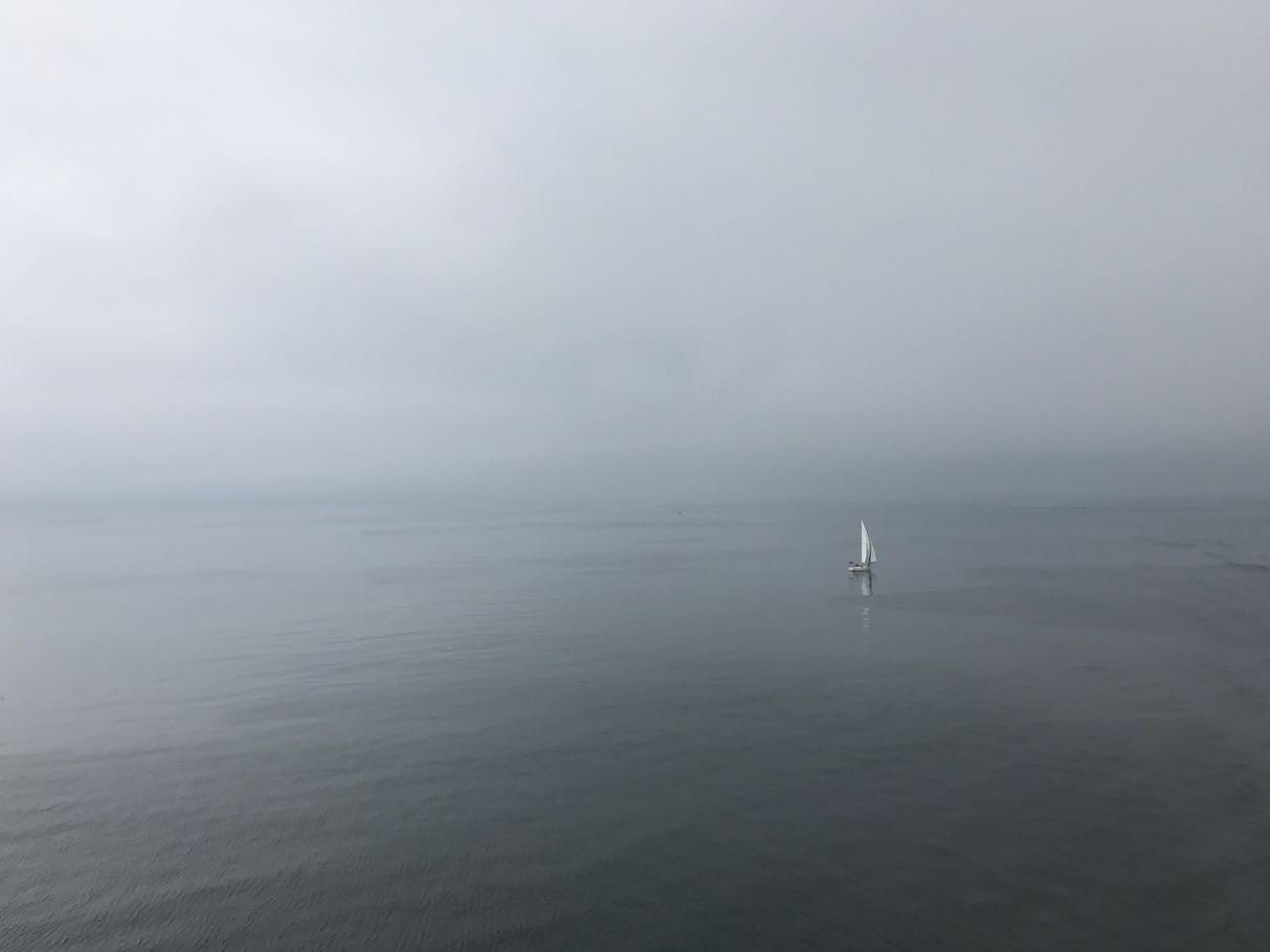 M/S Finlandia väistää purjeveneen tyynessä aamussa.