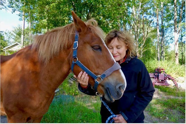 Hanna silittää hevosta