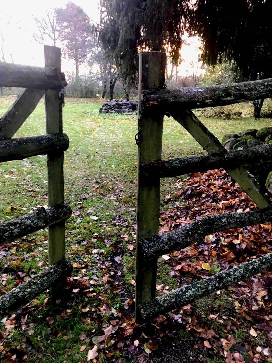 Sammalen ja jäkälän peittämä portti suljetaan kettingillä, joka on löytynyt maasta. Se liittyy jotenkin lehmiin tai hevosiin. Haike us.