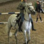 Perustakaa hevoskauppa tädeille