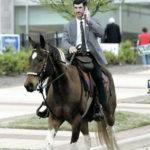 Kännykkä kädessä hevosen selässä? Sillä lailla.