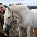 Millainen Suomen hevosmaailman pitäisi olla?