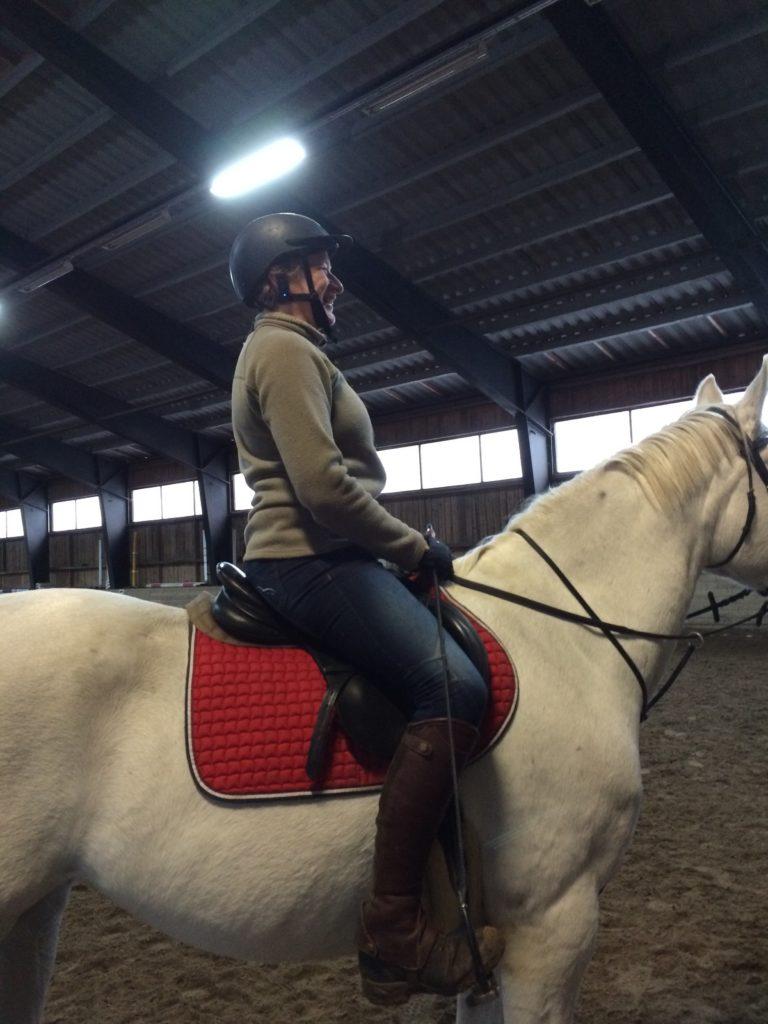 Pelastakaa edes hevoset, osa 2