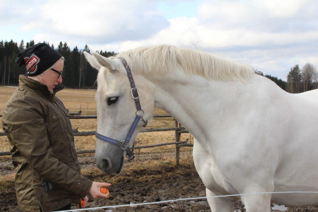 Hevosen paras ystävä on Katja.