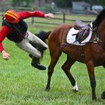 Hevosten ja läppärien kanssa saa olla tarkkana
