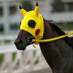 Hevosen silmä näkee Pokemonin