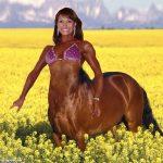 Miten jymäytän läheisiäni hevosasioissa