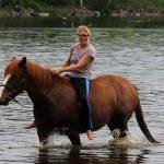 Normaalin suomalaisen hevosnaisen fb-päivitykset