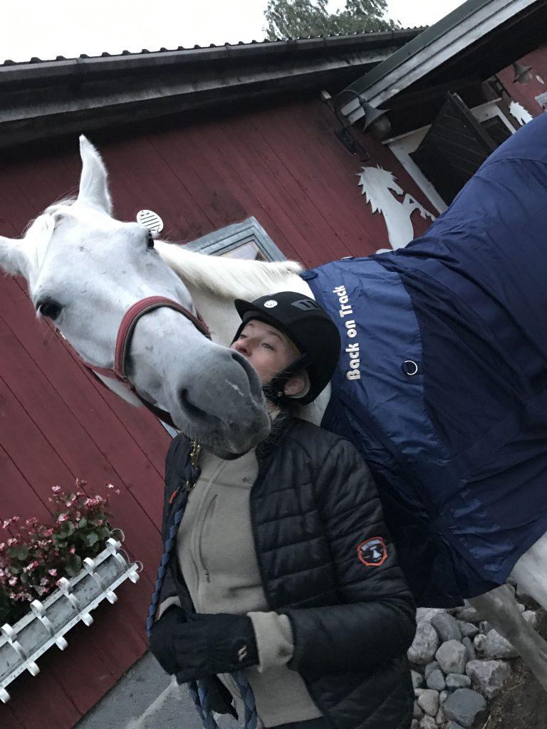 Ja sitten hevonen sotkee hienon kuvaustilanteen.