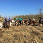 Juustoa, laulua ja viiniä - ja aijoo - hevosia