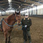 Hevoskasvatus kannattaa aina! (ja maapallo on litteä)