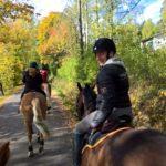 Miksi hevosnaiset ovat onnellisempia ja elävät pidempään