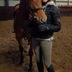 Hevosenomistajan arki on huoletonta ja rentoa