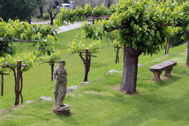 Hotellin puutarhasta löytyy niin oliivipuita kuin patsaitakin.