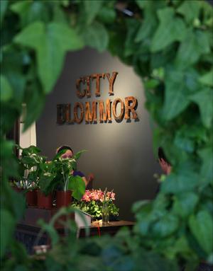 CityBlommor2
