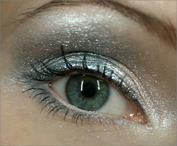Silver_eye3