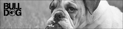 Bulldog Natural Grooming