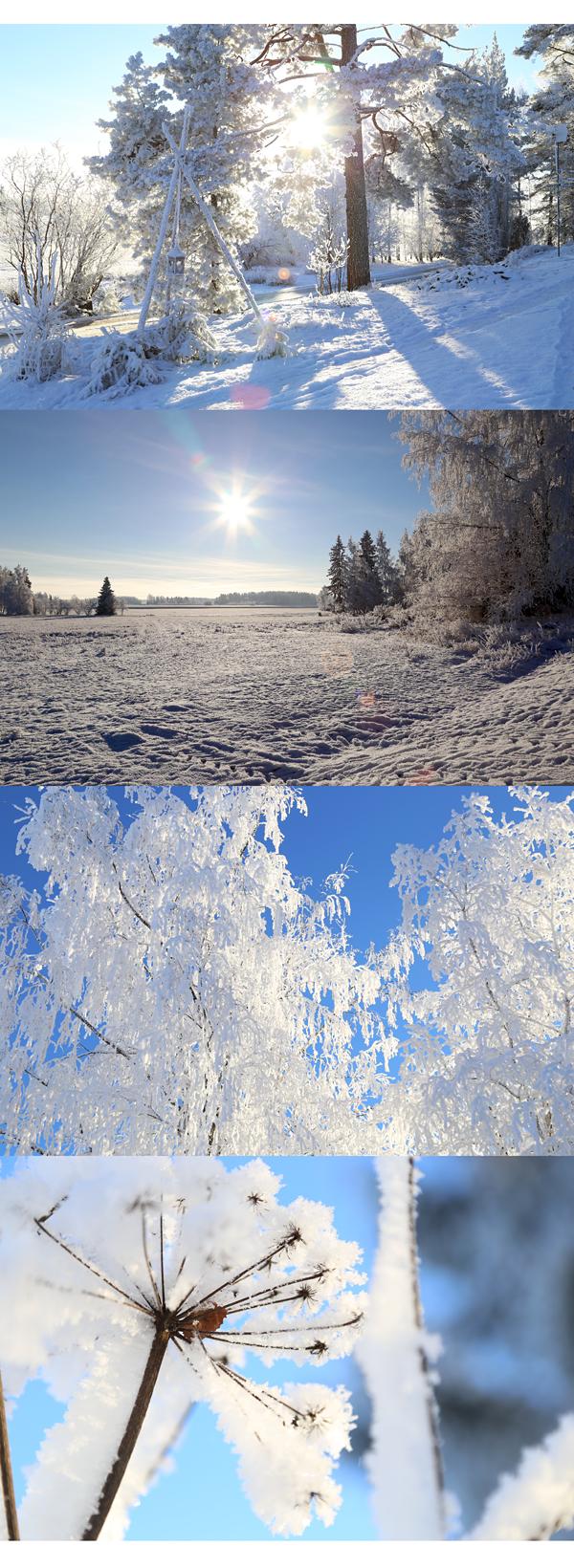 Talvikuvia1_tammikuu14