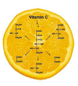 CVitamiini