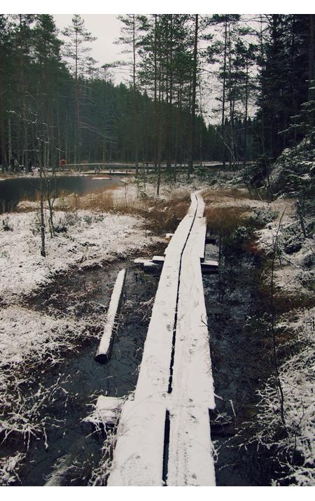 """Induktioviikko 2 - lauantai - """"jos metsään haluat mennä nyt"""""""