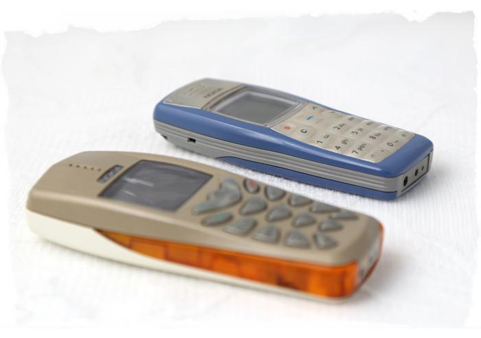 Kannykat_Nokia3510_1100