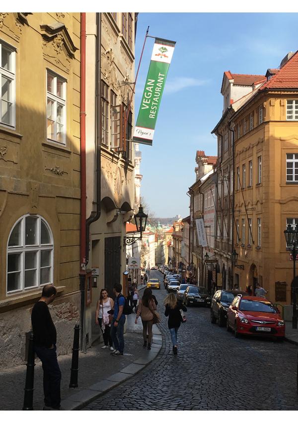 Praha_IMG_0557