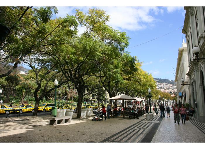 Madeira kuvia_IMG_4781