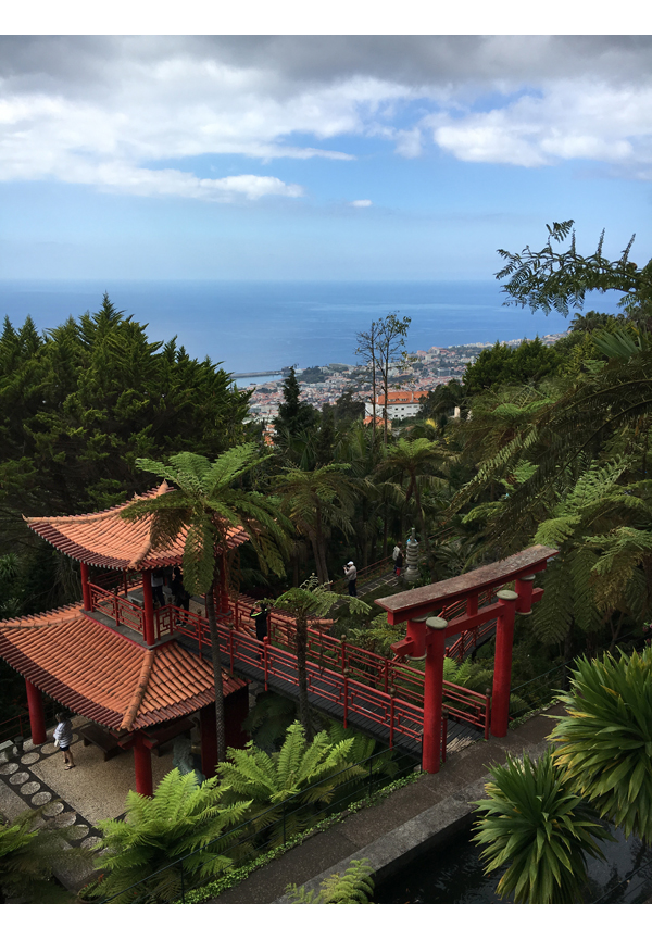 Madeira kuvia_MonteGarden_IMG_1688
