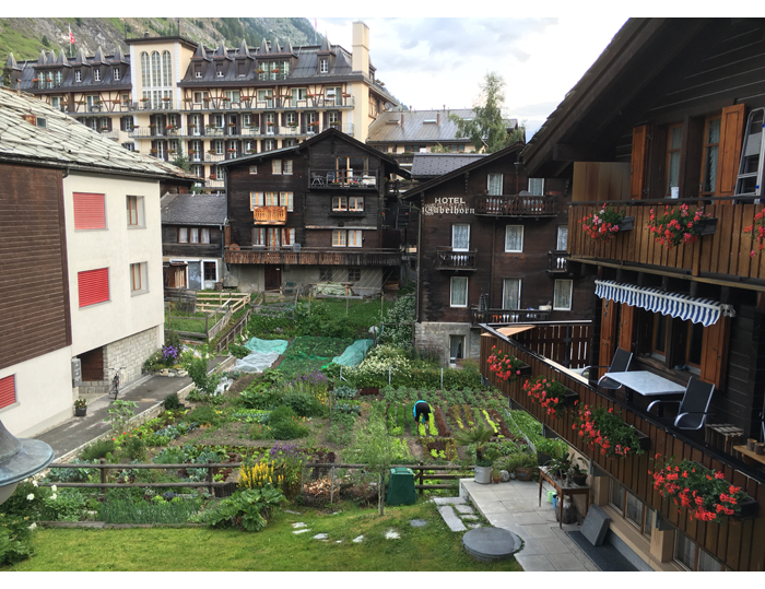 Zermatt_IMG_3887