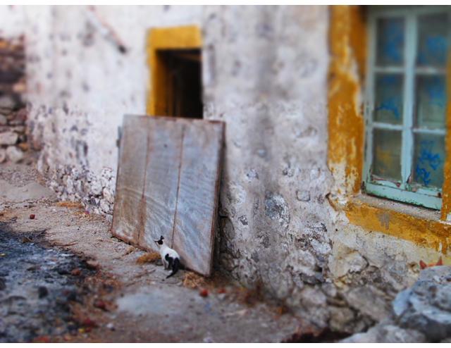 Patmos2012_IMG_3281
