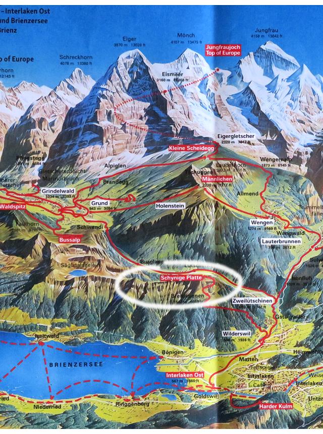 Jungfrau_region_IMG_7255_SchynigePlatte