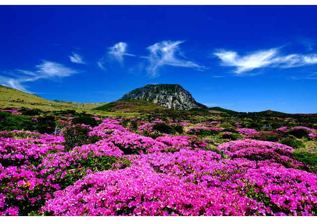 Maisemasnobi Jejun paratiisisaarella