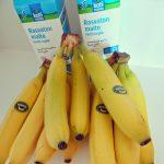 Banaanidietti, estenomiopiskelijan taidonnäyte