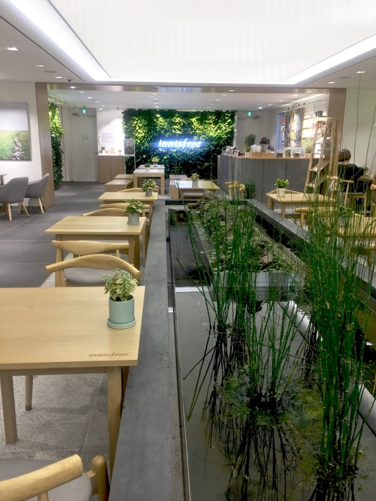 Innisfree Cafe Seoul Ostolakossa Virve Vee - 1 (2)
