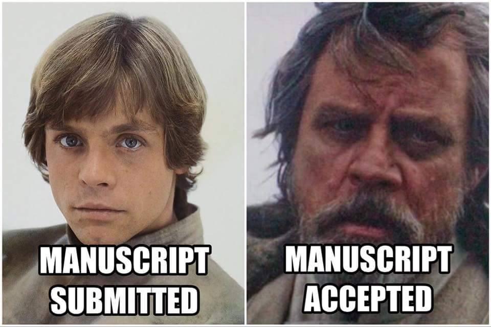 manuscript accepted