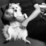 """Maailman paras koiran """"isä"""""""